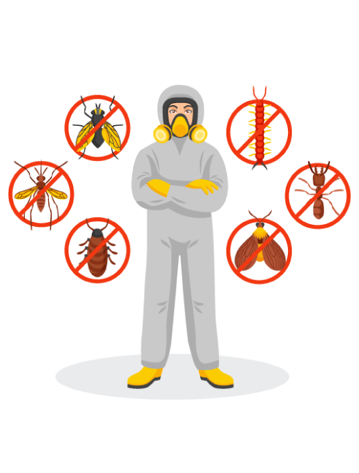 Best Pest Control Elwood